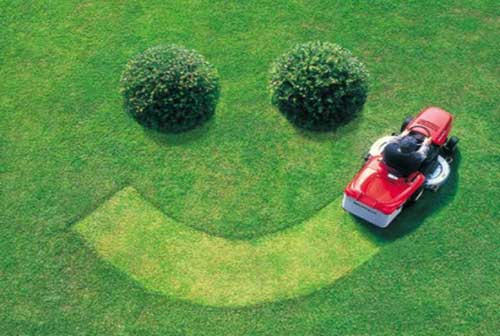 Yard Care Tips