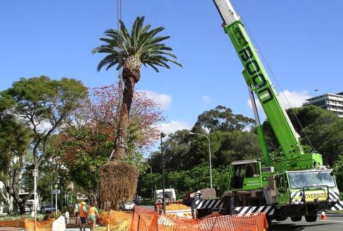 Landscape Company Perth
